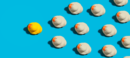 Rubber ducks leadership concept on a blue background Foto de archivo