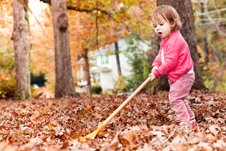 Toddler girl raking leaves in autumn outside Standard-Bild