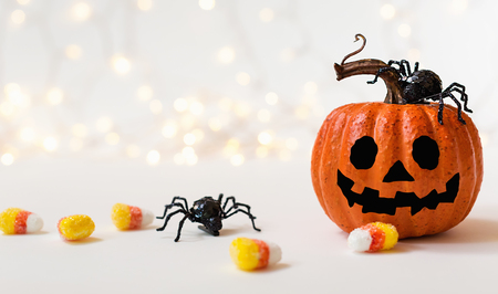 Halloween pumpkin with spider on a shiny light background Фото со стока