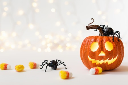 Halloween pumpkin with spider on a shiny light background Stock Photo