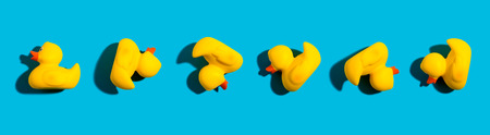 Collection of yellow rubber ducks on a blue background Banco de Imagens