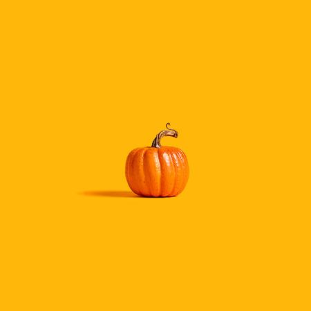 Herfst oranje pompoen op een oranje achtergrond