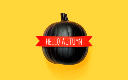 Hello autumn with a black pumpkin with a red banner Stock Photo