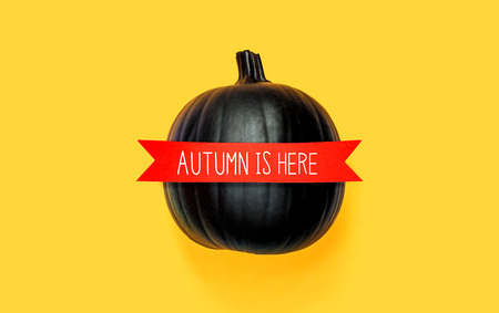 Autumn is here message with a black pumpkin with a red banner