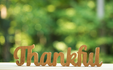 Thankful and grateful on a shiny green forest background Stock Photo - 109559326