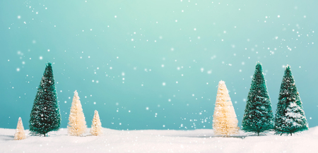 Small green and white Christmas trees in snow Stok Fotoğraf
