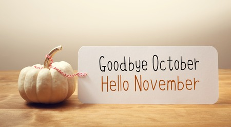 Goodbye October Hello November message with a white small pumpkin