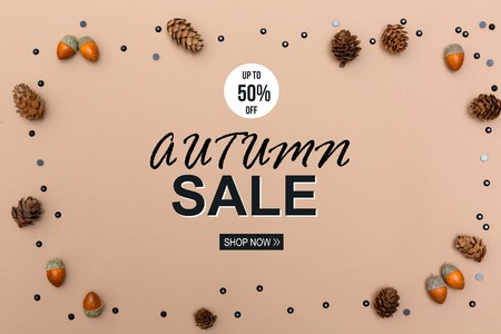 Autumn sale theme message with autumn themed background border