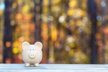 Piggy bank on a fall forest background with fall savings theme Standard-Bild