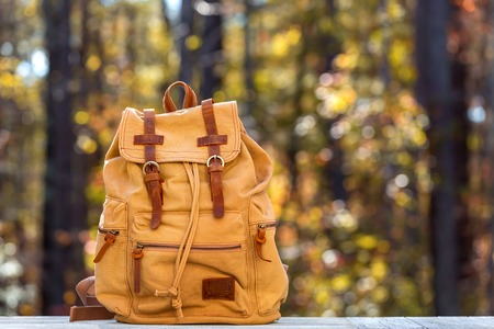 Rustic backpack outside on a fall forest background Stockfoto