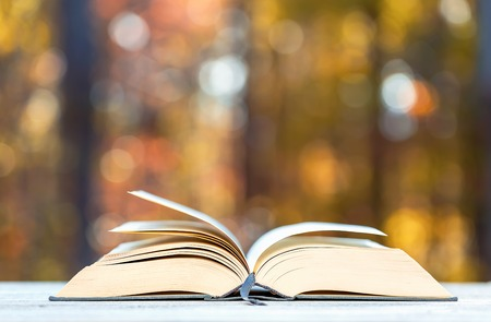 Big hardcover book on a fall forest background Stock fotó