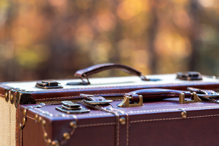 Suitcases on a fall forest background autumn travel theme 写真素材