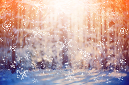 Beautiful snowy forest and abstract shiny light background