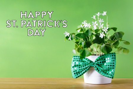 Saint Patricks Day shamrock in white pot with bowtie Stok Fotoğraf