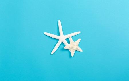 A starfish on a blue paper background Фото со стока
