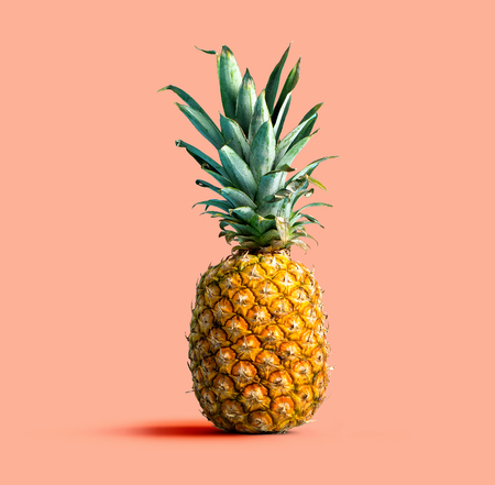 One pineapple on a solid color background Imagens