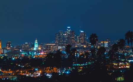 Downtown Los Angeles skyline at night with palm trees in the foreground