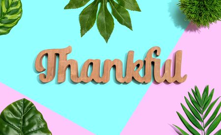 Thankful wooden text with green tropical leaves