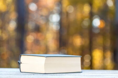 Big hardcover book on a fall forest Stock fotó