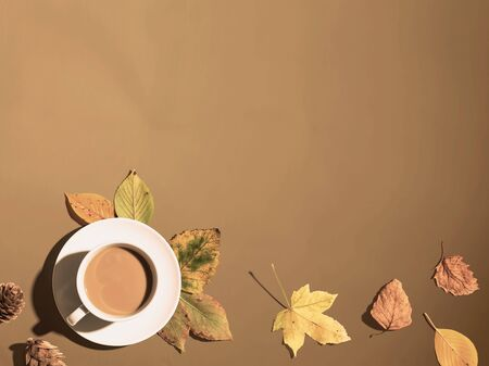 Autumn theme with a cup of coffee - overhead view flat lay