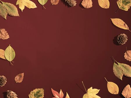 Autumn leaf border frame from above - flat lay