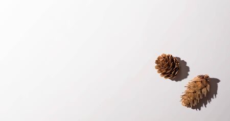Autumn pine cones from above - overhead view flat lay Stock Photo