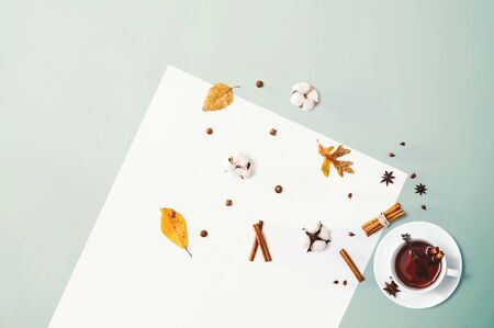 Black tea with cinnamon sticks and star anise - overhead view