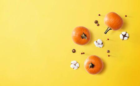 Autumn theme with orange pumpkins - flat lay Stockfoto
