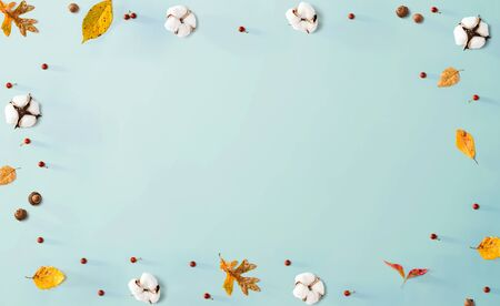 Autumn leaves and cotton flowers - flat lay