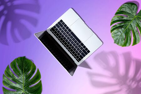 Laptop computer with tropical leaves from above Zdjęcie Seryjne