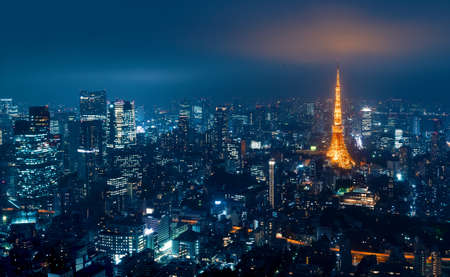 Tokyo, Japan cityscape view from high above