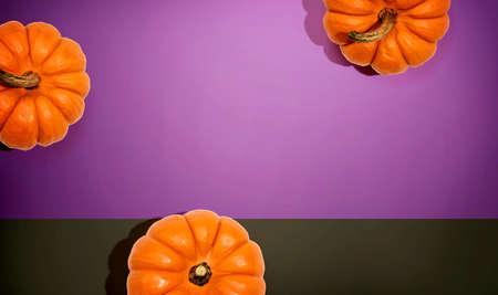 Autumn orange pumpkins overhead view