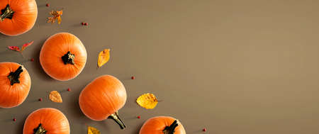 Autumn pumpkins with colorful leaves