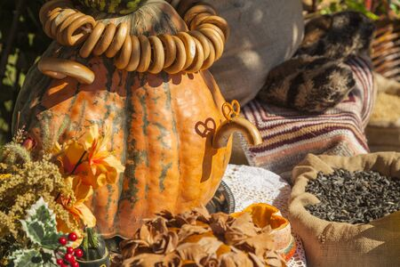 golden autumn, large different pumpkins, Different varieties of pumpkins, a wooden cart with pumpkins,Funny crafts made of pumpkins, Pumpkin figures: a teapot