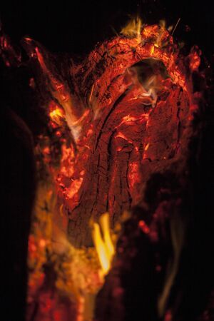 background of a burning tree (there is noise, and out of focus), Burning background for design of pumpkins in Halloween. Banco de Imagens