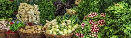 Vegetables in the market, radishes, onions, dill, parsley,