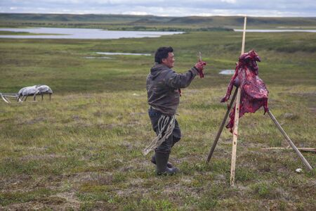 the extreme north, the preparation of deer meat, remove the hide from the deer, 新聞圖片