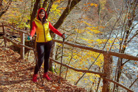 Active way of life, The girl is walking along the path in the woods by Scandinavian walking. Walk in the autumn forest