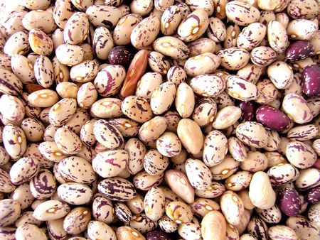 common bean: bunch of dried Pinto or mottled beans.  Stock Photo