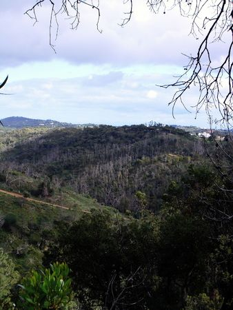 peacefull: Hill formation view of Serra do Caldeirão near the small town S.Brás de Alportel on Algarve, Portugal.