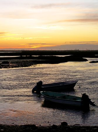 Two traditional portuguese fishing boats anchored on the swamp at dawn. Stock Photo - 3922870