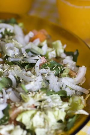 Table with typical portuguese salad with onions, tomatoes and pepper. photo