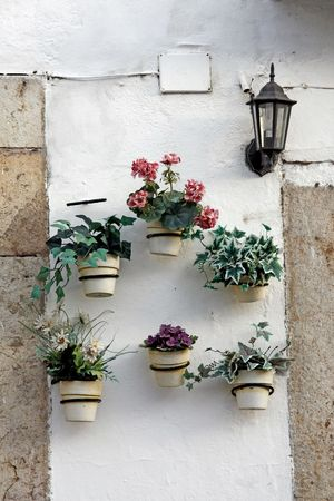 aligned: Several flower pots aligned on a wall.