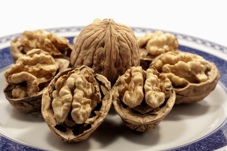 close view detail of  some walnuts on a plate isolated on a white background. photo