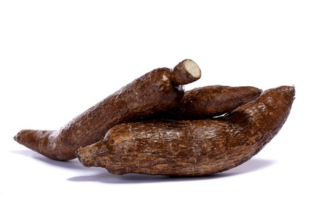 Close up view of the cassava root isolated on a white background.