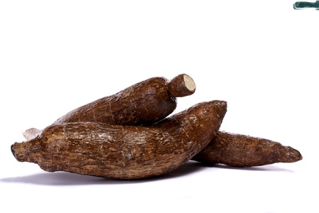 cassava: Close up view of the cassava root isolated on a white background.