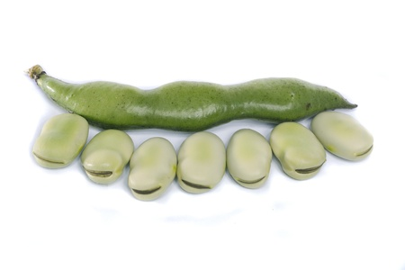 Close up view of some broad beans isolated on a white background. photo