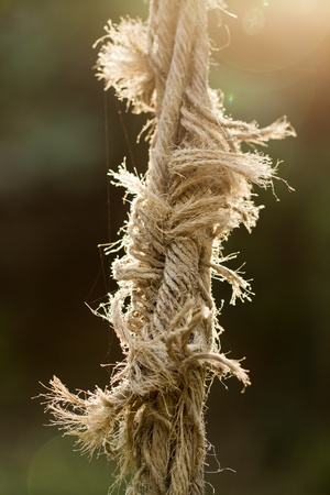 disjoint: Close view of an ripped old rope.
