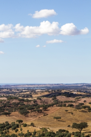View of a typical Alentejo dry landscape located in Portugal. Stock Photo - 15507320