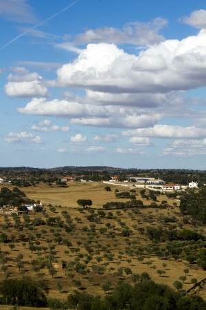 View of a typical Alentejo dry landscape located in Portugal. Stock Photo - 15274905